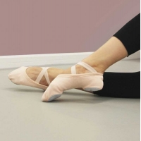 Alista Stretch Canvas Ballet Shoenen
