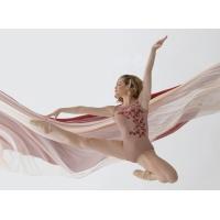 Ballet Rosa Adele Mouwloos Balletpak Roze