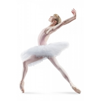 Bloch Belle Practice Tutu Skirt Wit